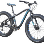 Fat Tire Qattara slide I
